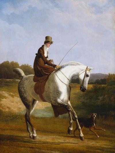 Miss Cazenove on a Grey Hunter, a Dog Running Alongside-Jacques-Laurent Agasse-Giclee Print