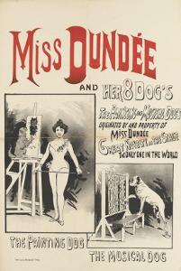 Miss Dundee and her 8 dogs, le chien peintre et le chien musicien