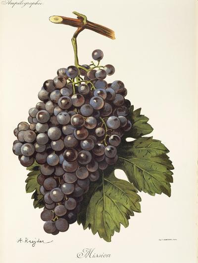 Mission Grape-A. Kreyder-Giclee Print