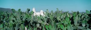 Mission San Xavier Del Bac from 1783-1797, Tucson, Arizona