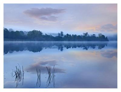 Mist over Lackawanna Lake, Lackawanna State Park, Pennsylvania-Tim Fitzharris-Art Print