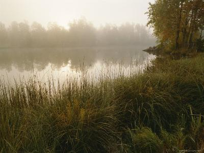 Mist Rises from a Pond-Mattias Klum-Photographic Print