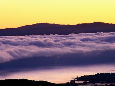 Mist Rolling over Vineyards, Napa, California-Oliver Strewe-Photographic Print