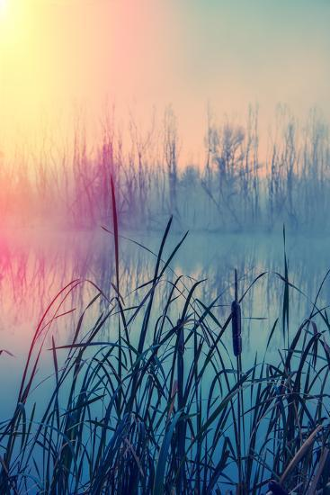 Misty Autumn Morning on the River, Rural Landscape-Andriy Solovyov-Photographic Print