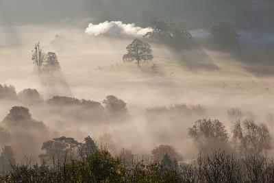 Misty Autumn Morning, Uley, Gloucestershire, England, UK-Peter Adams-Photographic Print