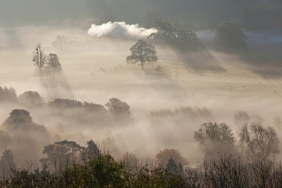 Misty Autumn Morning, Uley, Gloucestershire, England, UK-Peter Adams-Photographic Print
