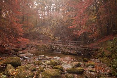 Misty Autumn Valley Near Ambleside, Lake District National Park, Cumbria, England, United Kingdom-Ian Egner-Photographic Print