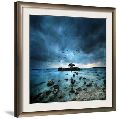Misty Blue-Philippe Sainte-Laudy-Framed Photographic Print