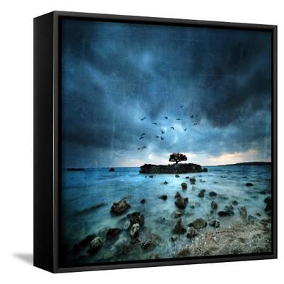 Misty Blue-Philippe Sainte-Laudy-Framed Canvas Print