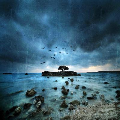Misty Blue-Philippe Sainte-Laudy-Premium Photographic Print
