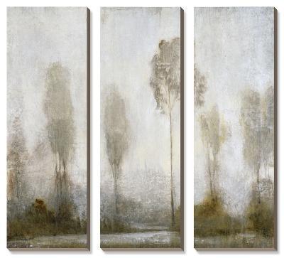 Misty Marsh II-Tim O'toole-Canvas Art Set