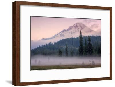 Misty Morning at Mount Hood Meadow-Vincent James-Framed Photographic Print