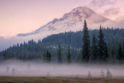 https://imgc.artprintimages.com/img/print/misty-morning-at-mount-hood-meadow_u-l-q1gdtc00.jpg?p=0