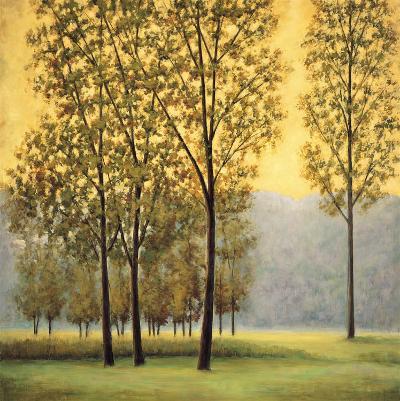 Misty Morning II-Neil Thomas-Art Print