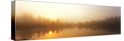 Misty Morning, Volvo Bog, Illinois, USA