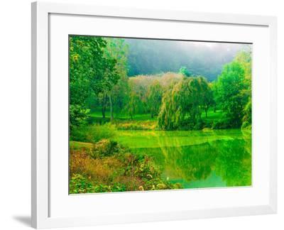 Misty Morning-Steven Maxx-Framed Photographic Print