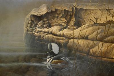 Misty Passage-Michael Budden-Giclee Print