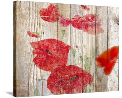 Misty Poppy--Stretched Canvas Print