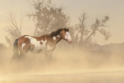 Misty River-Gordon Semmens-Photographic Print