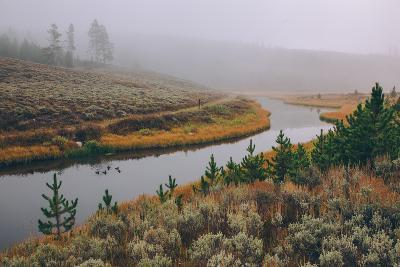 Misty Stream Through Yellowstone, Wyoming--Photographic Print