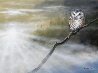 https://imgc.artprintimages.com/img/print/misty-wild-ii_u-l-q11kjck0.jpg?p=0