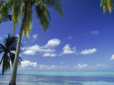 Bora Bora Island, French Polynesia So Pacific