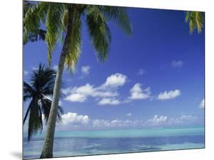 Bora Bora Island, French Polynesia So Pacific by Mitch Diamond
