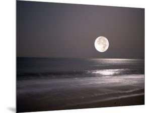Full Moon by Mitch Diamond