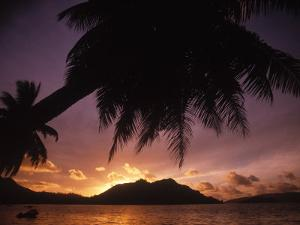 Tropical Beach at Sunset, the Seychelles by Mitch Diamond