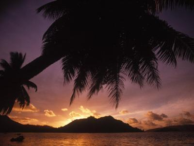 Tropical Beach at Sunset, the Seychelles