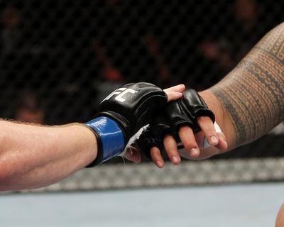 UFC Fight Night: Hunt V Nelson