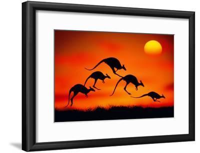 KANGAROOS IN MIDAIR AT SUNSET