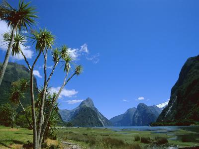 Mitre Peak, Milford Sound, Otago, South Island, New Zealand, Pacific-Neale Clarke-Photographic Print