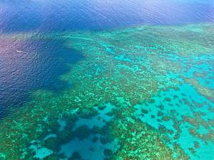 Aerial View of the Great Barrier Reef, Queensland, Australia by Miva Stock