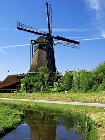 Windmills, Zaanse Schans, Zaanstad, Netherlands