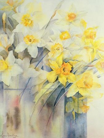 https://imgc.artprintimages.com/img/print/mixed-daffodils-in-a-tank_u-l-pjcisk0.jpg?p=0
