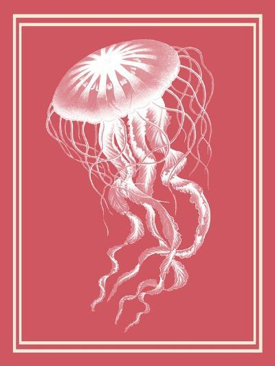 Mixed Nautical White on Coral b-Fab Funky-Art Print