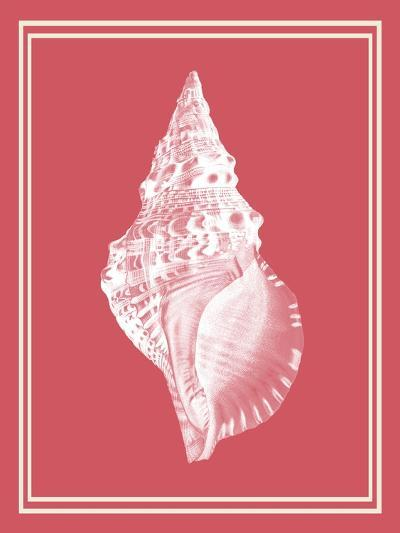 Mixed Nautical White on Coral d-Fab Funky-Art Print