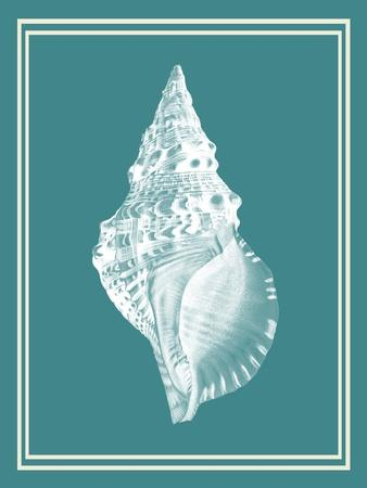 Mixed Nautical White on Teal c-Fab Funky-Art Print