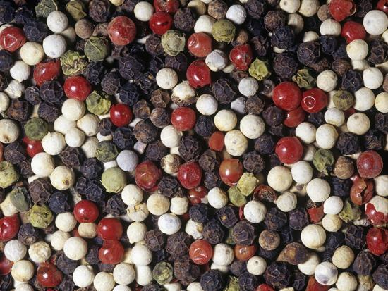 Mixed Varieties of Peppercorn or Pepper Fruits for Use as a Spice or Herb (Piper Nigrum)-Ken Lucas-Photographic Print