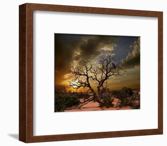Moab Tree-Richard Desmarais-Framed Art Print