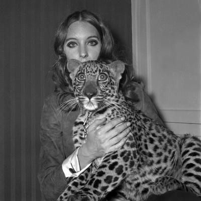 https://imgc.artprintimages.com/img/print/model-antonia-with-her-panther-tatch-16-november-1967_u-l-pwgmdp0.jpg?p=0