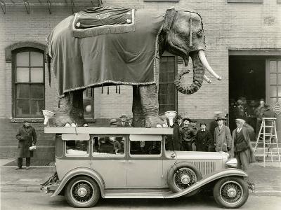 Model Elephant Atop a Vintage Motor--Photographic Print