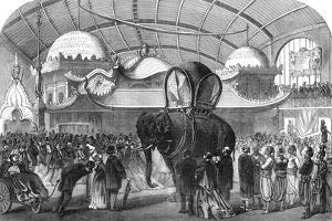 Model of an Elephant in the Siamese Section of the Machine Gallery, 1867
