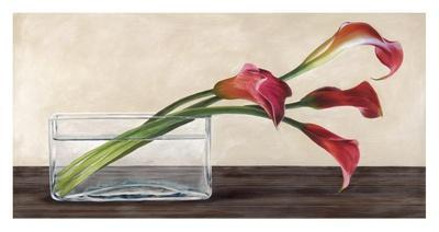 https://imgc.artprintimages.com/img/print/modern-composition-callas_u-l-f794dv0.jpg?p=0
