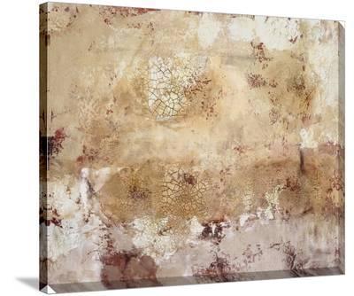 Modern Fresco II-Tim O'toole-Stretched Canvas Print