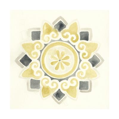 Modern Medallions I-June Erica Vess-Art Print