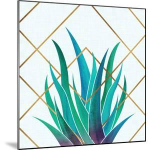 Agave With Geometrics by Modern Tropical