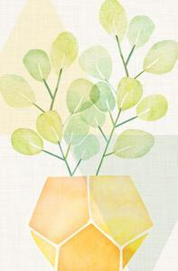 House Plant With Geometrics by Modern Tropical