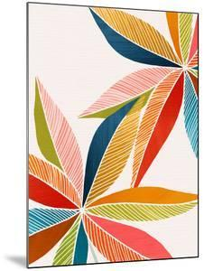 Multicolorful by Modern Tropical